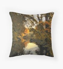Tranquil Reflection Throw Pillow