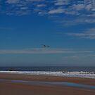 Topsail's Friendly Skies by mojo1160