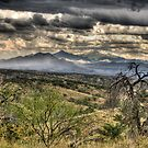 Storm Clouds Over Arizona by David F Putnam