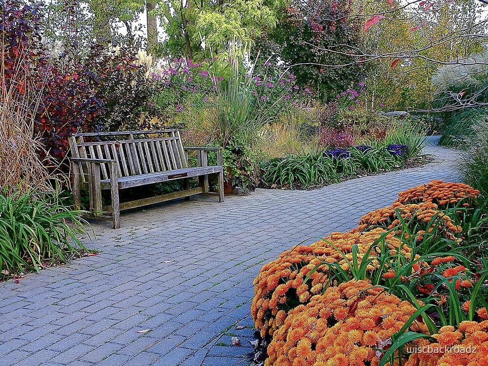 Autumn In Full Bloom by wiscbackroadz