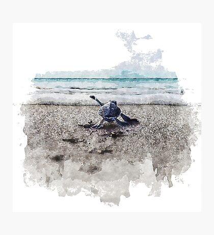 Baby Sea Turtle Waling - Watercolor  Photographic Print