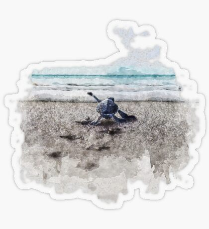 Baby Sea Turtle Waling - Watercolor  Transparent Sticker