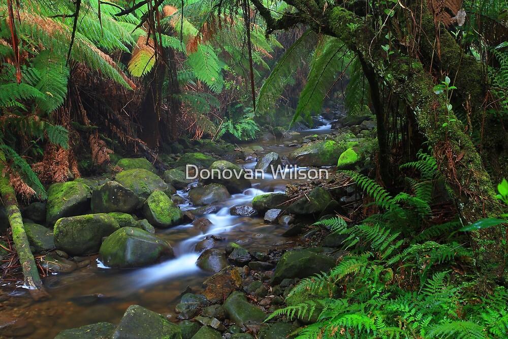 Badger Weir. by Donovan Wilson