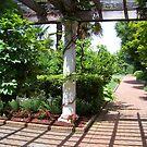 Architecture In Botanical Garden by Diane Rodriguez