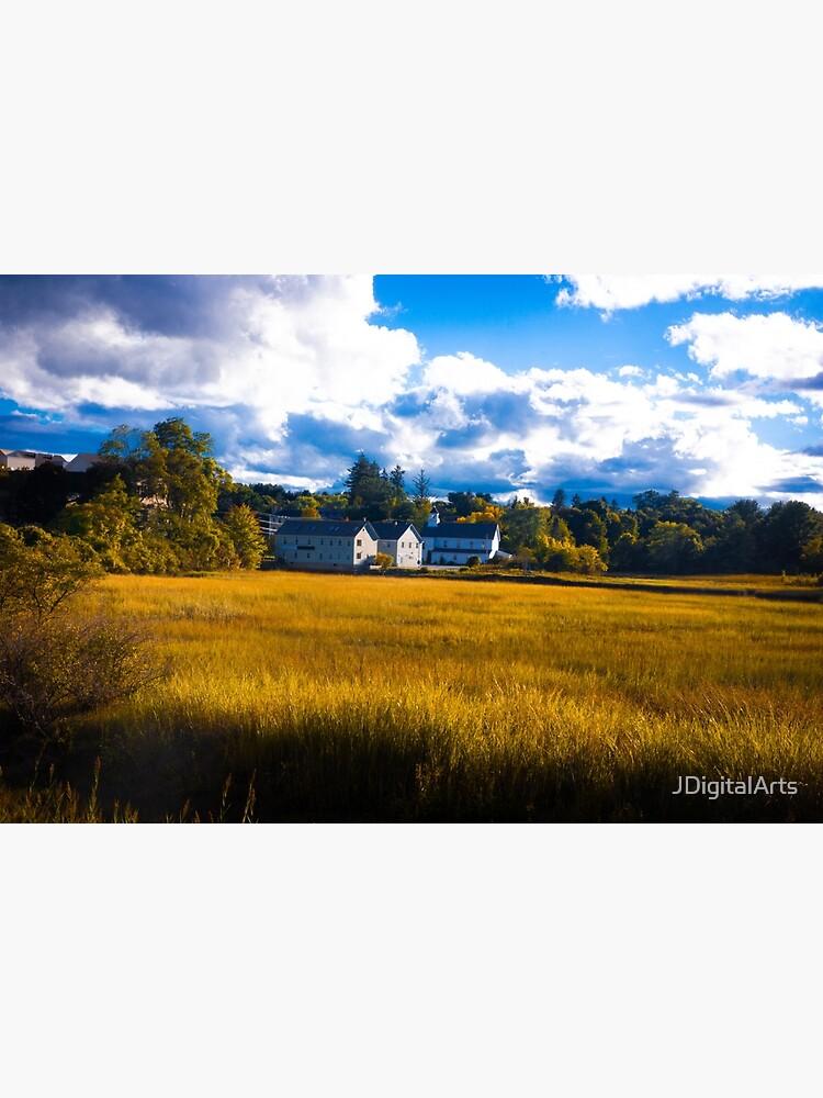 Salt Marsh Homes by JDigitalArts