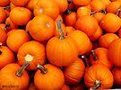 Pile-O-Pumpkins by Marcia Rubin