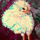 Sweet Chick Portrait by hdettman