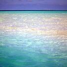 Walking on Water by Carol Barona