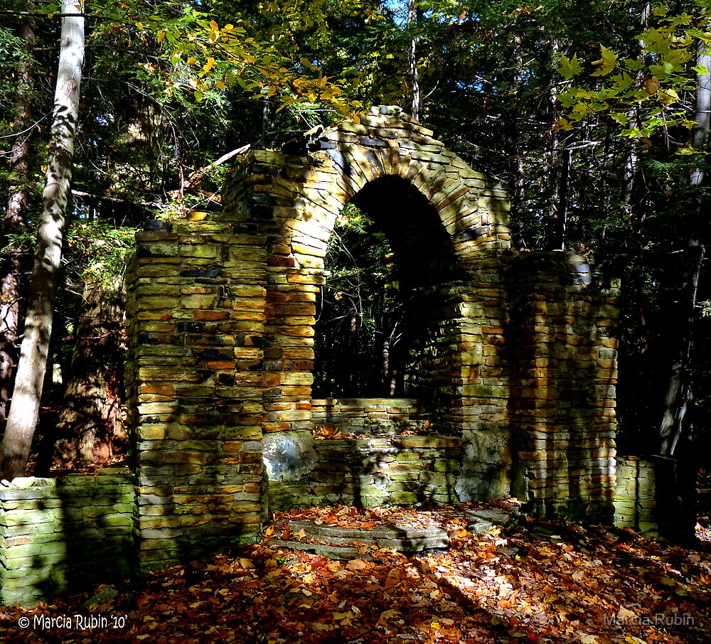 History deep within the Woods...  by Marcia Rubin