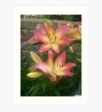 Beautiful lily Art Print