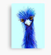 QUIRKY EMU  Canvas Print