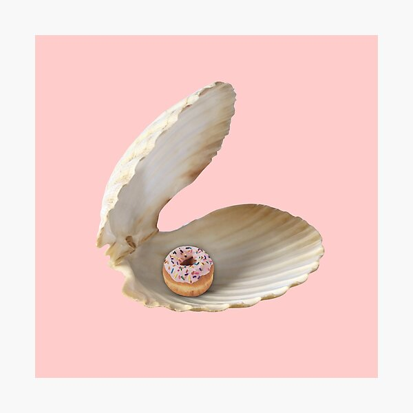 Donut Shell  Photographic Print