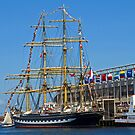 Tall Ships in Boston by Lee d'Entremont