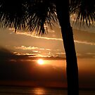 Pelican Bay Sunset by Monica M. Winkler