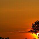 Sunscape by Bharat Varma