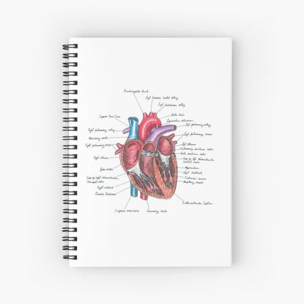 Corazón saludable Cuaderno de espiral