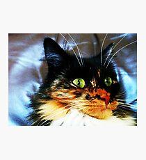 Scarey Movies Photographic Print