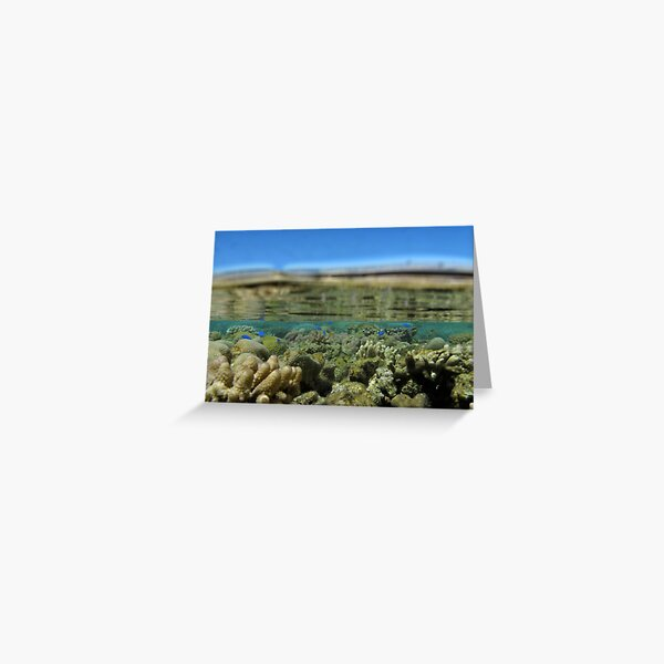 The World Below Greeting Card