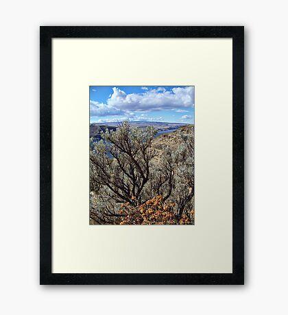 Untamed West (Sagebrush) Framed Print