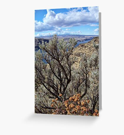 Untamed West (Sagebrush) Greeting Card