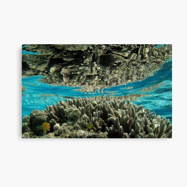 Aqua Realm I Canvas Print