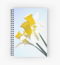 Sunny Daffodils on Blue Sky Spiral Notebook
