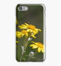 Sunlit Flowers iPhone Case/Skin
