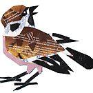Shred Sparrow by Ruud van Koningsbrugge