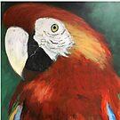Bright colourful parrots by Bobbleheadnanna