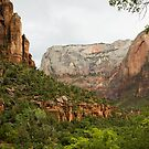 Zion scenery by jeffrae