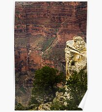View from North Rim Poster