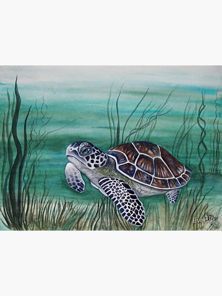 Hawksbill Sea Turtle by EverIris