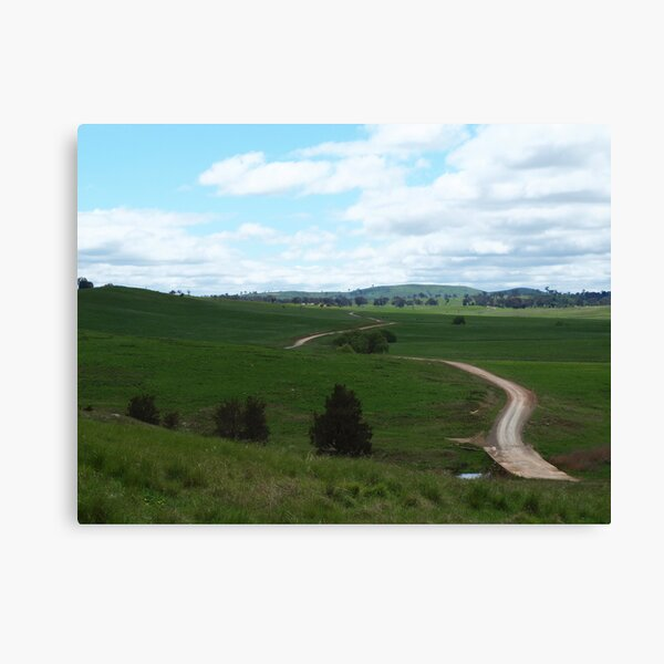 The Road Across The Shady Green! Canvas Print