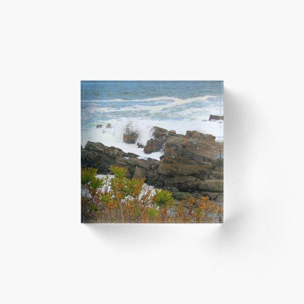 Rocky Coast of Maine Acrylic Block