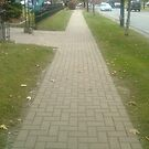 follow the non yellow brick road by catnip addict manor