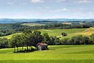 Forgotten Farmhouse In Mid-Summer  by Gene Walls