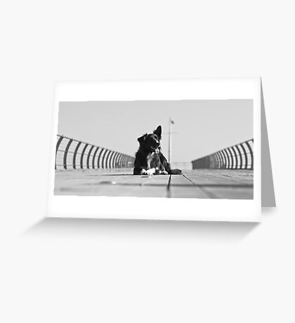 On the Pier Greeting Card