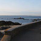 Facing the sea by 29Breizh33