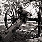 Civil War Cannon by Edward Myers