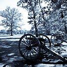 Shiloh Civil War Battlefield by Edward Myers