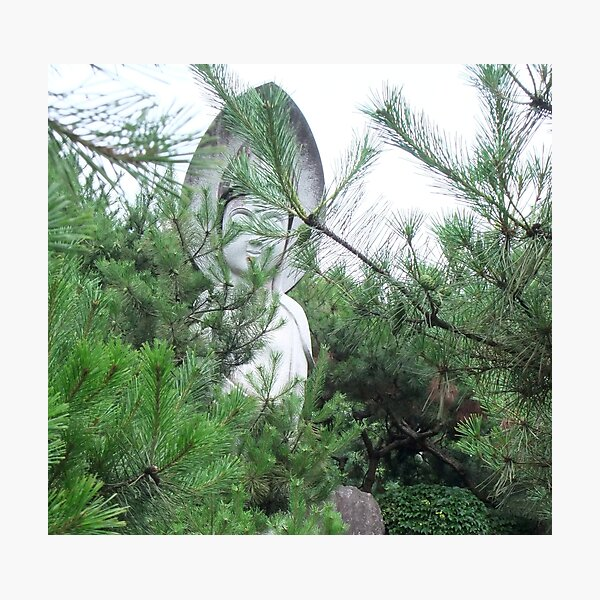 Kwan Yin in the Pines Photographic Print