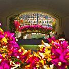 Framed by Flowers by gazmercer