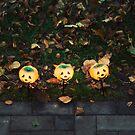 Pumpkin Heads by Fanboy30