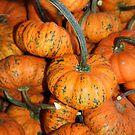 Tiny Halloween by Dana Yoachum