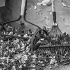 """""""Manual Labor"""" by Mary Fox"""