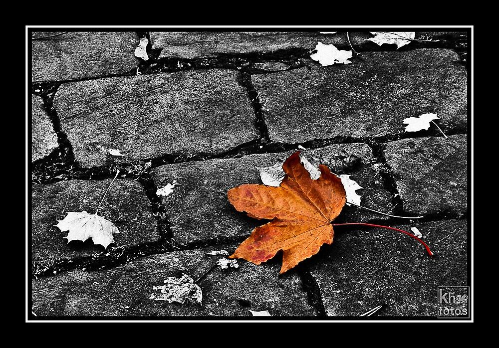 Leaf by Kelvin Hughes