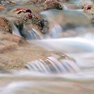 Bull Creek Flow by Scott Chambless