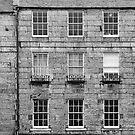 Windows by Lynne Morris
