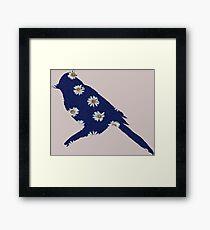 Daisy Bird Framed Print