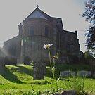 Old Saint Timeless Daisy, Lastingham, North Yorkshire by John Sunderland